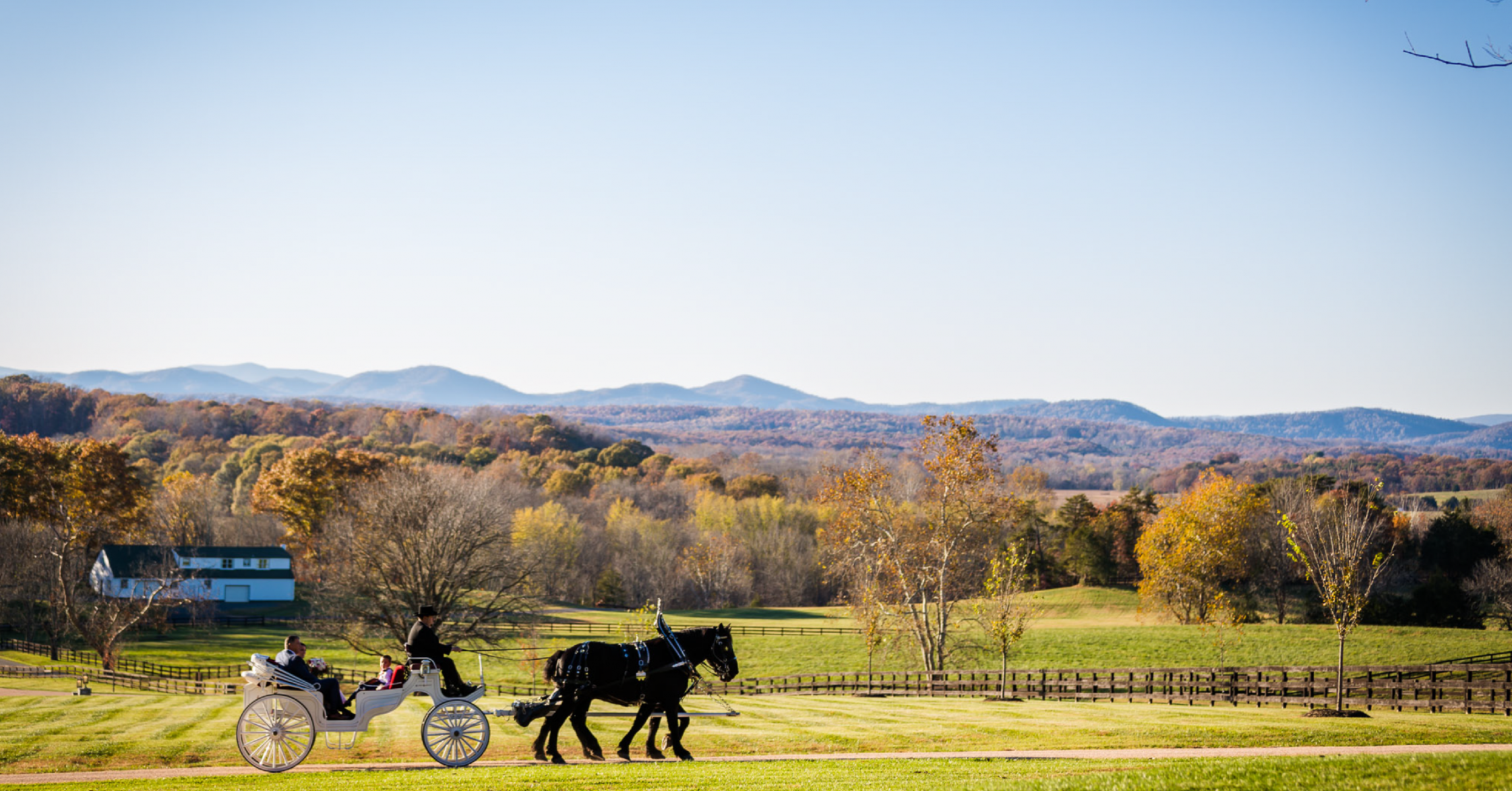 Bride and Groom Recess in Horse and Carriage against mountain backdrop at Mount Ida Farm and Vineyard